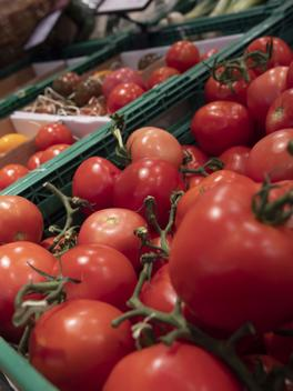 Analysis of Plastic Packaging of Tomatoes in Switzerland
