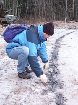 Polluted Beaches Clean Up in Finland