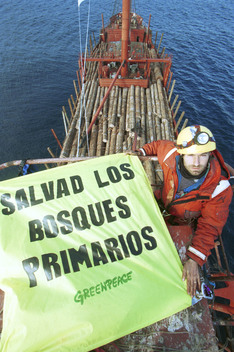 Action on Timber Ship Meltemi in Spain