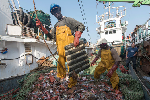 Joint Fisheries Surveillance in Guinea Bissau