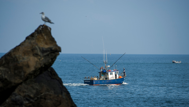 Artisanal Fisheries in the Cantabrian Sea