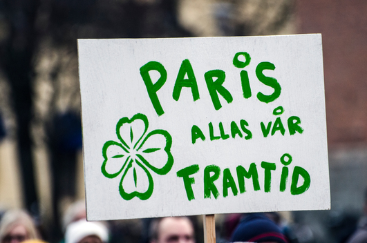 COP21: Climate March in Falun