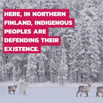 Sámi Reindeer Herders Oppose Railroad Construction in Finland - Web Video (ENG)