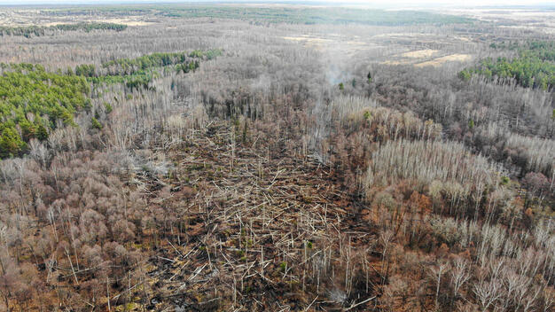 Aerial Reconnaissance of a Peat Fire in the Vladimir Region
