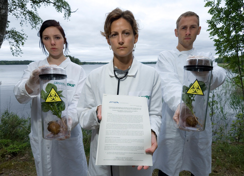 Protest against GE Potatoes in Sweden