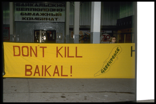 Baikal Pulp & Paper Mill Action in Russia