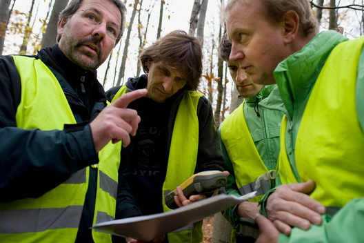 Tree Metering at City Forest in Goettingen