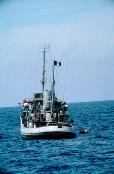 French Navy Vessel During MV Greenpeace's Pacific Peace Tour 85