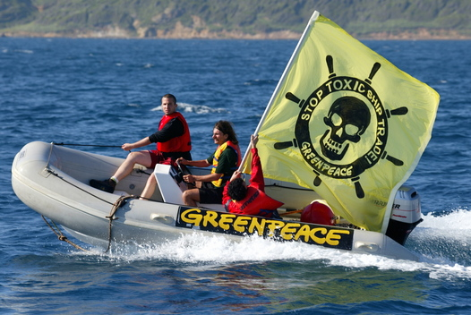 Action against Toxic Cargo Ship in Turkey