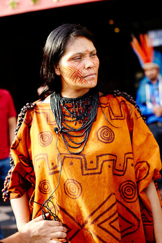 Indigenous Woman at COP20 Summit in Lima