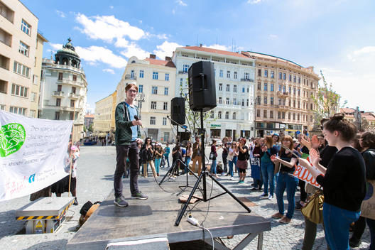 Fridays for Future Students Demonstration in Brno