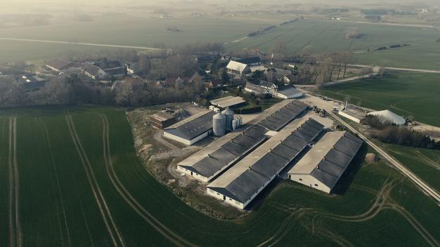 Factory Farm in Baarup, Denmark