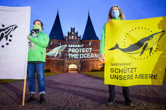 World Oceans Day 2020 - Projection at the Holsten Gate in Luebeck