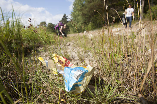 Brand Audit and Clean-up Activity on Gulf of Finland Shores in Russia