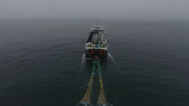 Greenpeace Investigates Arctic Bottom Trawling Fleet - Web Video (CLEAN VERSION)