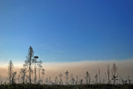 Forest Fires Documentation in Riau