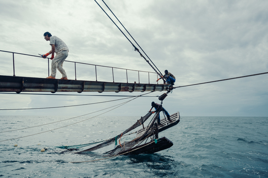 Chinese Fishing at Sea in Western Africa