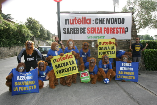 Forests Action at Italian Football Team Headquarters