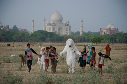 'Arctic Rising' at the Taj Mahal