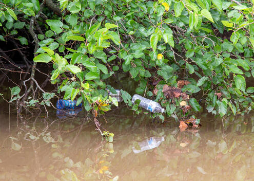 Plastic Pollution in the Anacostia River in Maryland