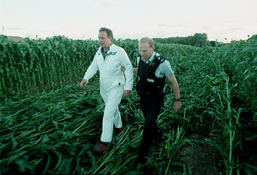 GE Maize Action at Trial Farm in UK