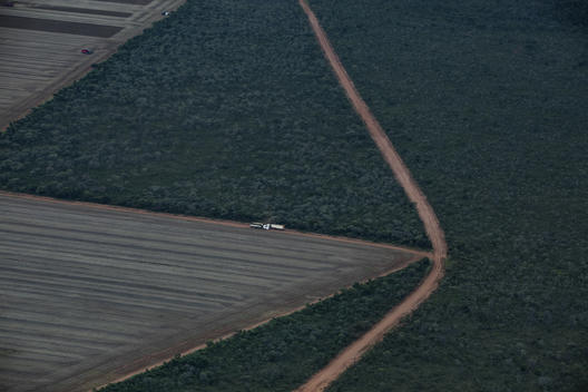 Area for Soya Plantation in Formosa do Rio Preto, Bahia State, Brazil