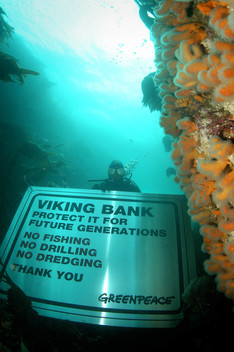 Oceans Action for Marine Reserves in Viking Bank