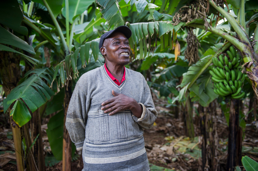 Ecological Farmer in Kenya