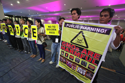 Protest against Golden Rice in Davao