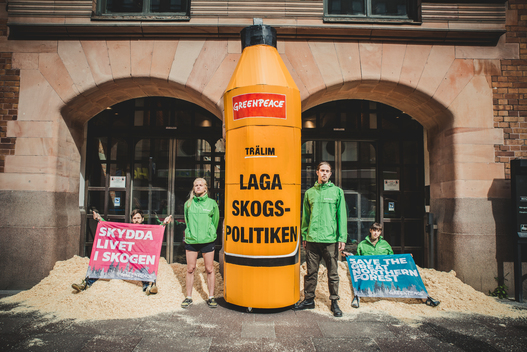 Save the Swedish Forests Action in Stockholm