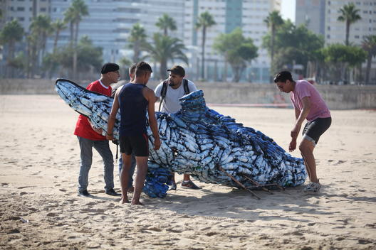 'Protect the Oceans' Whale Art Installation in Morocco