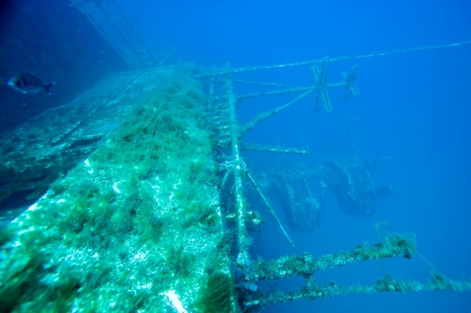 Underwater Action at the Don Pedro Wreck