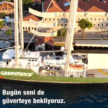 Rainbow Warrior in İstanbul (Web Video)