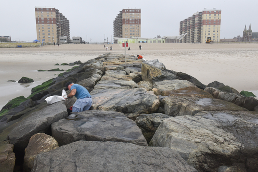 Beach Clean Up in New York to Raise Awareness
