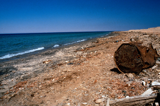 Oil pollution on the Red Sea coast between Hurghada and Suez. Egypt.