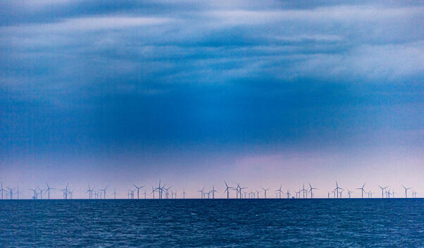 Wind Farm in North and Baltic Sea Protected Areas Project