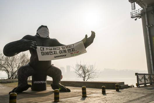 King Kong Air Pollution Action in Seoul