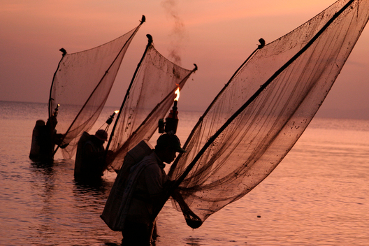 Net Fishing - Defending Our Oceans (Philippines: 2006)