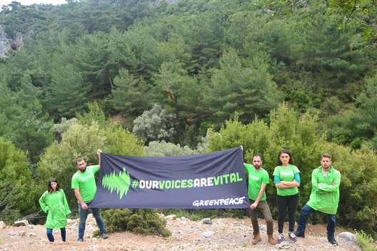 """Our Voices Are Vital"" Activity in Turkey"