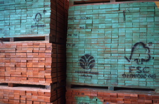 Precious Wood at Mil Madeiras Ltd. FSC, from Sustainable Logging in Amazon