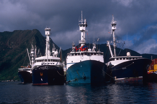 Tuna boats in Pago Pago harbour