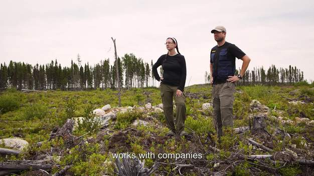 Canada's Largest Logging Company Want to Sue Greenpeace Out of Existence - Web Video (ENGLISH subs)
