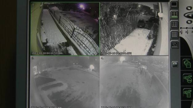 CCTV Shows Men Entering Grounds of Greenpeace Murmansk Office