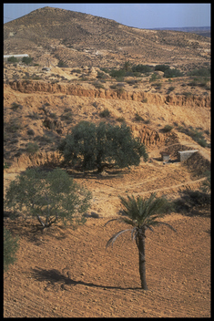 Landscape at Nouail after erosion work