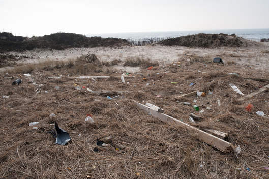Plastic Waste on the Beach of Sylt