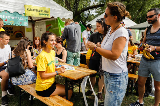 Greenpeace at Sziget Festival in Hungary