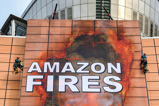 Activists Hack EU Commission HQ in Brussels with Giant Image of Amazon Fires