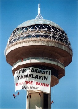 Toxics Incineration Action in Turkey
