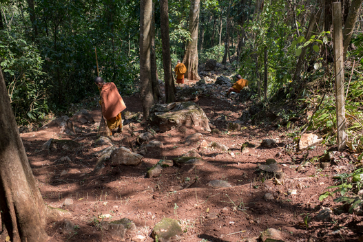 Volunteers Join Forces for Firebreak Maintenance Activity in the North of Thailand