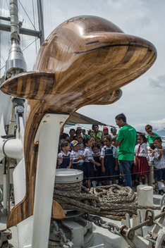 Open Boat Rainbow Warrior in Manokwari